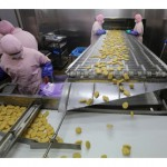 Shanghai factory shut after allegations of expired product, misleading inspectors