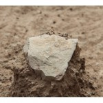 The earliest ever example of manufacturing? 3.3 m-year-old tools found