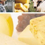 Dairy processor invests $10.3m in plant upgrades; seeks new milk suppliers