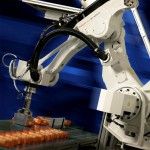 John Hart to launch FANUC robot systems at AUSPACK PLUS