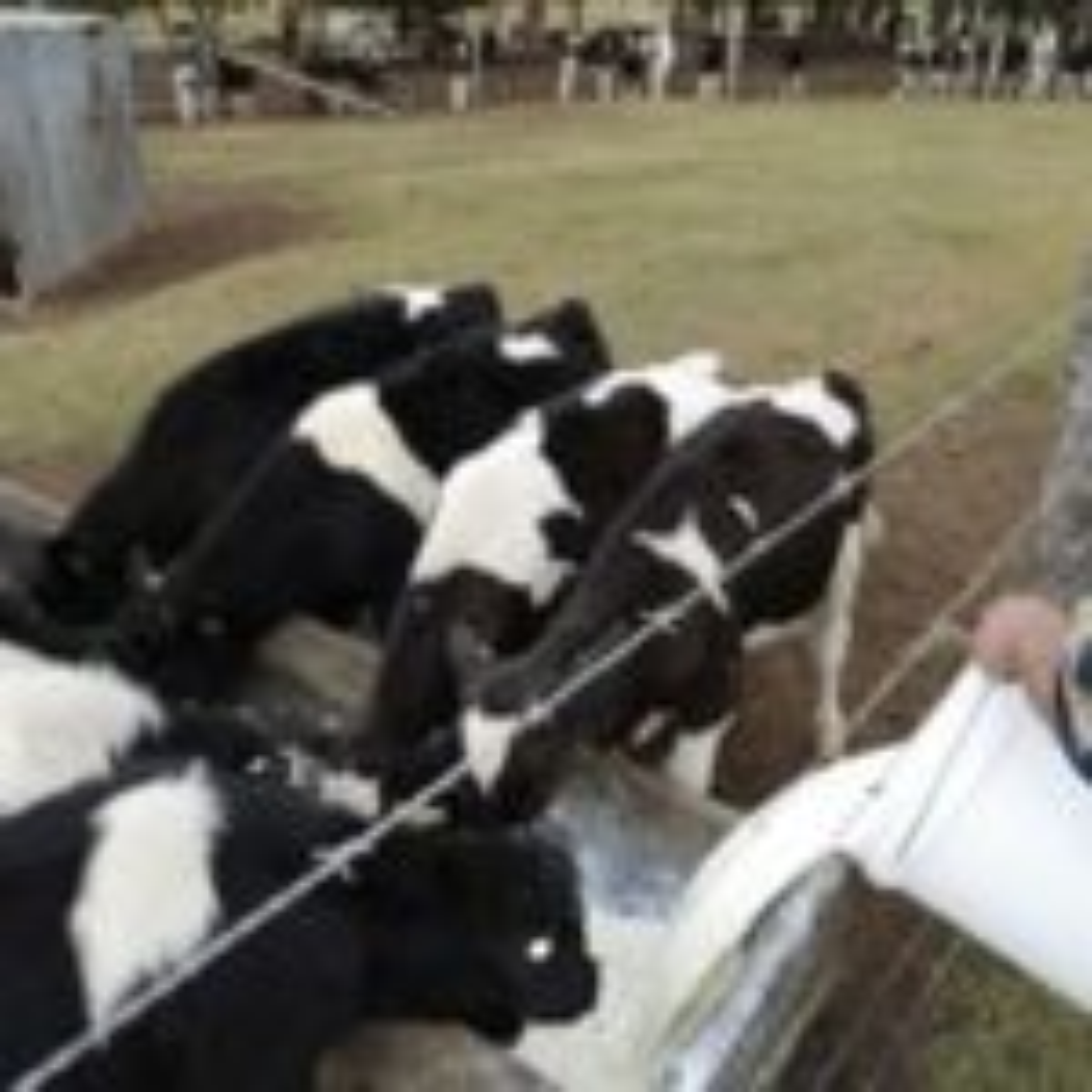 Murray Goulburn saga has roots in deregulation