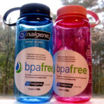 BPA substitute in common plastic goods could be dangerous for women's eggs