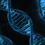 Novel gene-modified cell therapy developed