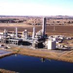 Renewable hydrogen a feedstock for ammonia manufacturing
