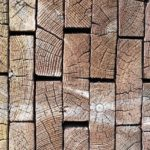 QLD timber industry ensured until 2026