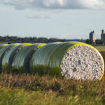 Keeping Australia's cotton gins spinning