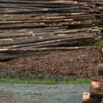 Aussie logs for Aussie jobs, report published