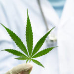 $400 million medicinal cannabis facility to create 1000 jobs in regional Queensland