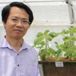 UWA funded to advance 3D computer vision and study crop nutrients